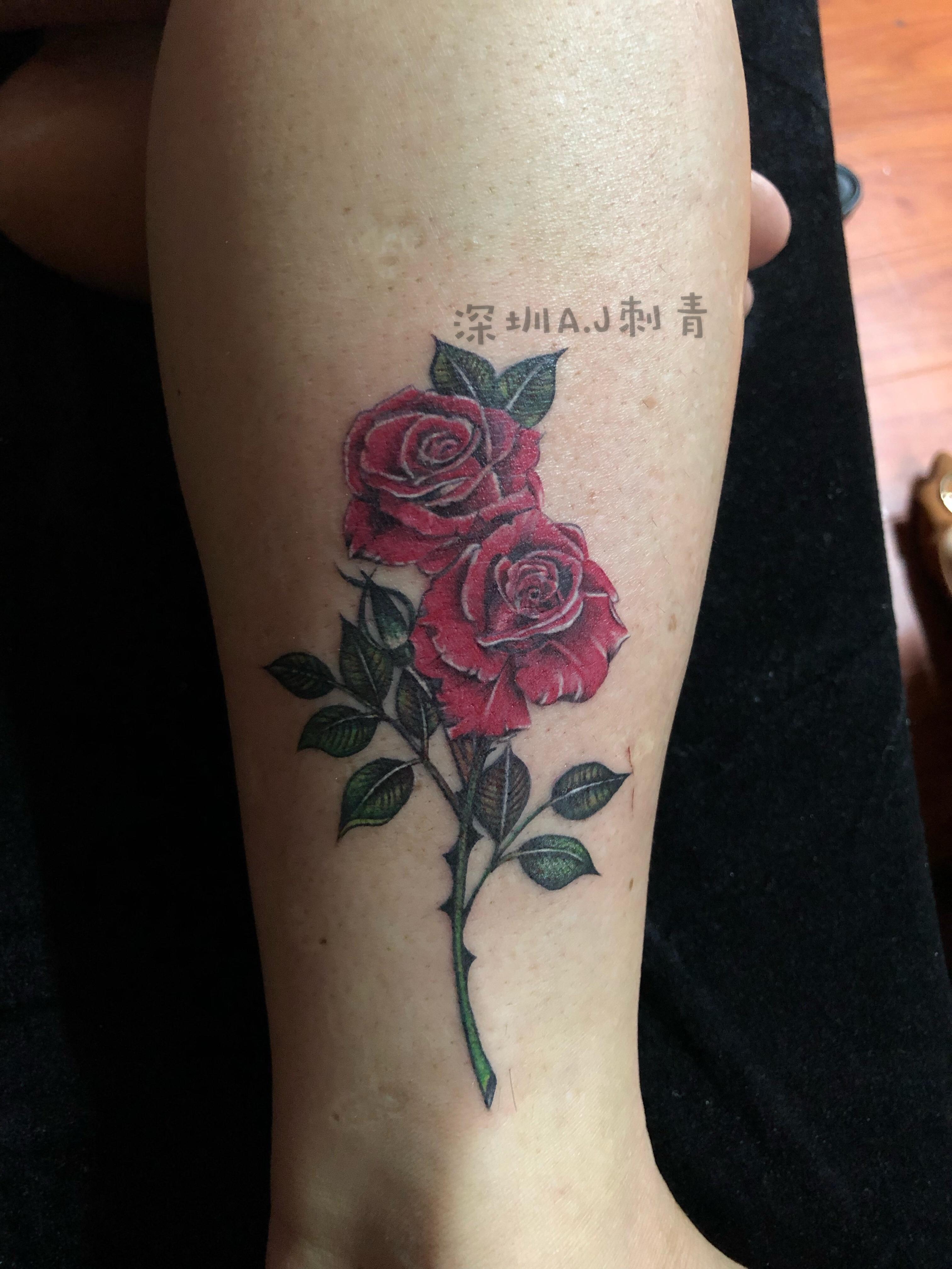 玫瑰-缩略图